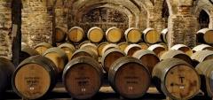 Casa Real: Wine cellar