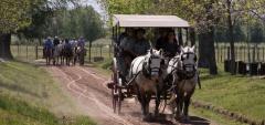 Estancia El Ombu - riding