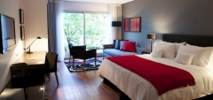 Fierro Hotel - Superior Bedroom