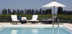 Posada Salentein - Pool & Vines