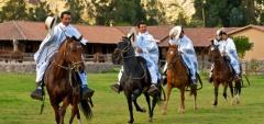 Hotel Sol y Luna - Horses