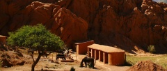Salta and the Northwest - horses